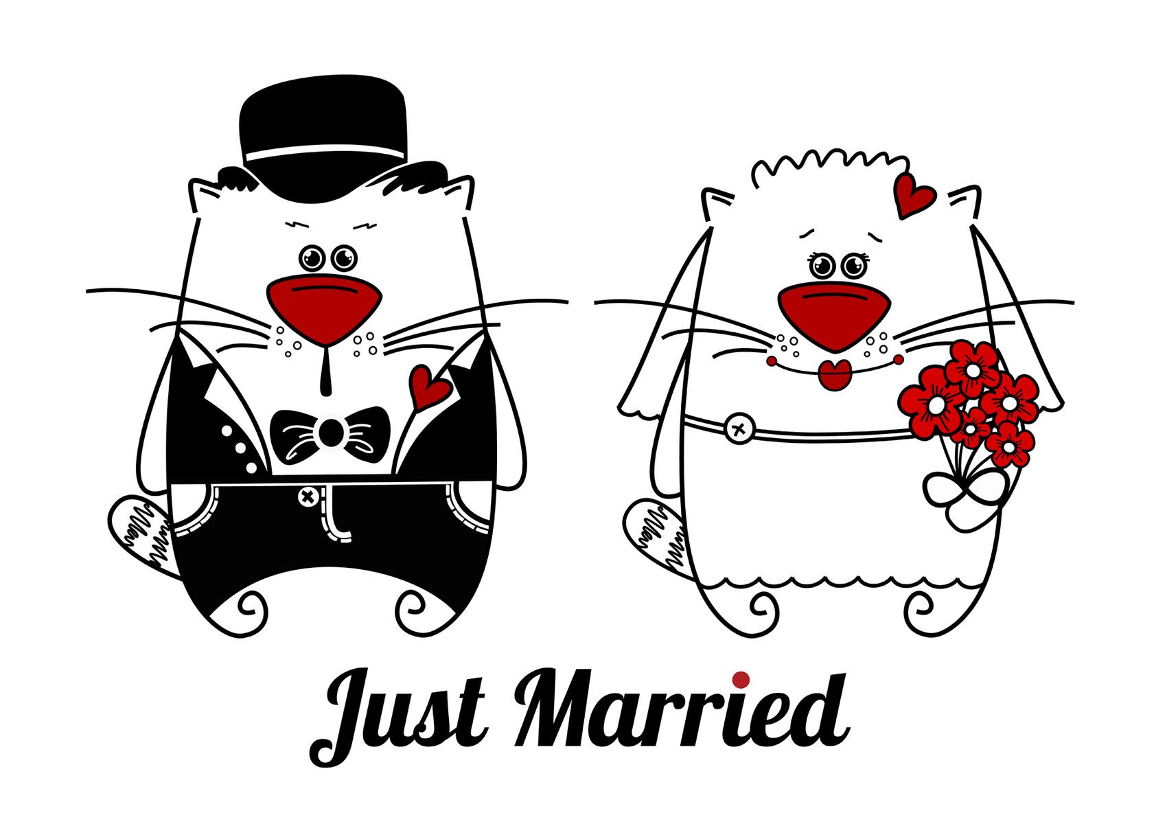 Поздравление с днем свадьбы смешные