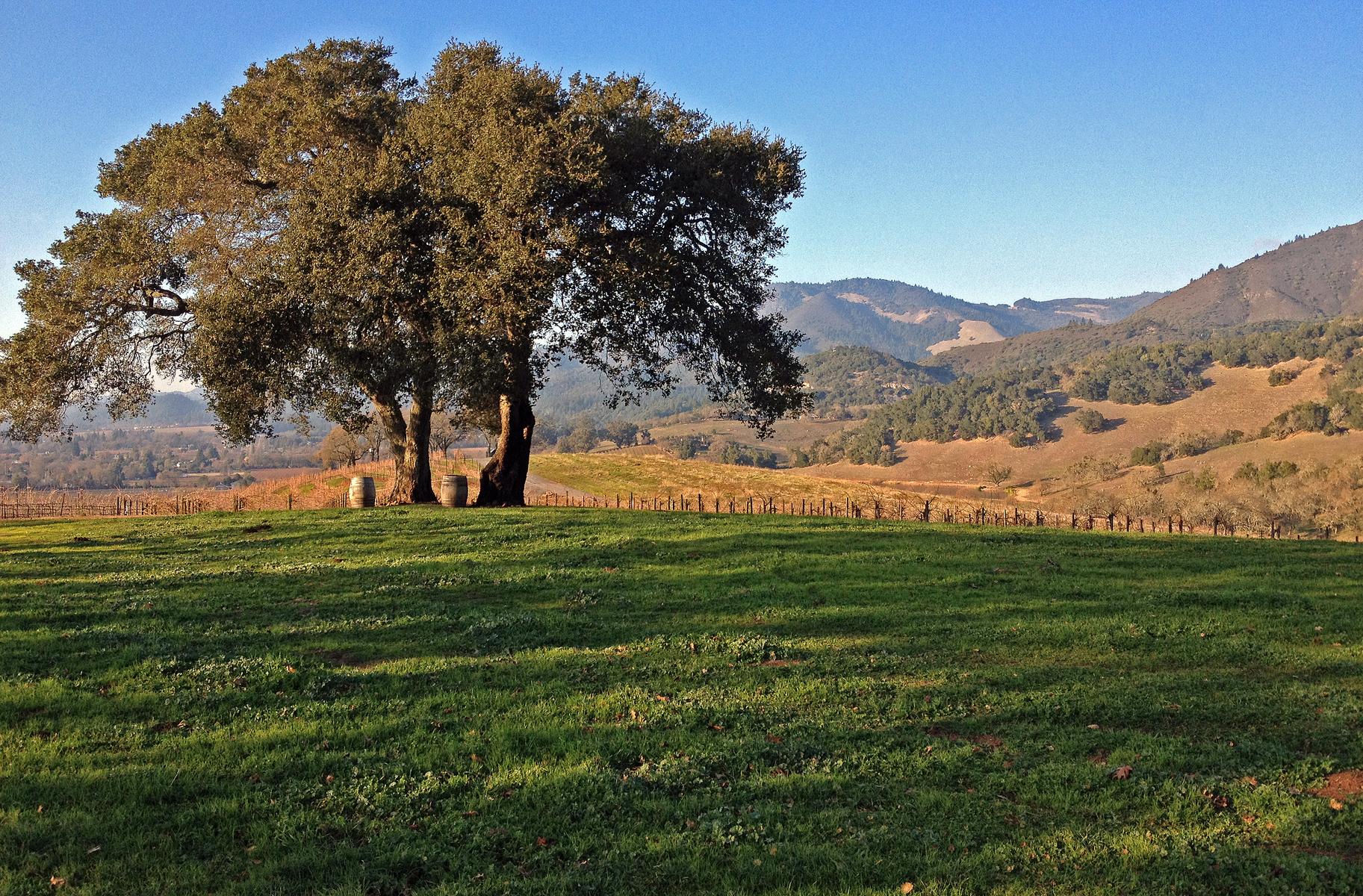 Kunde Estate, Sonoma County, California