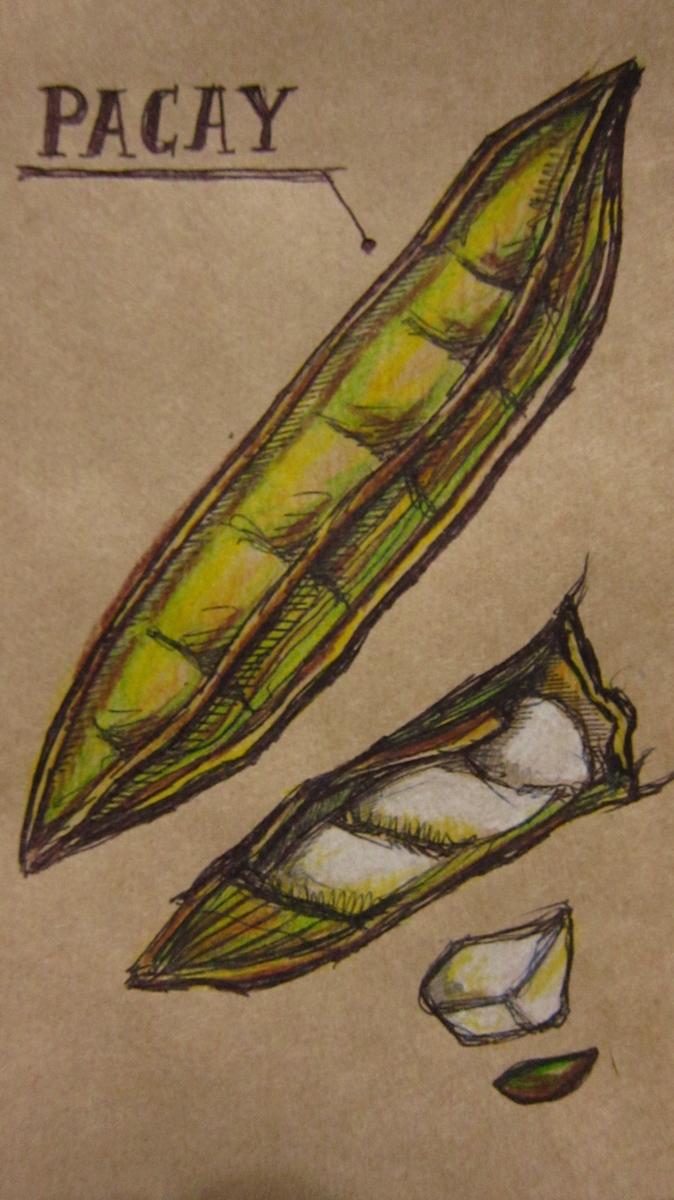Bolivian Produce