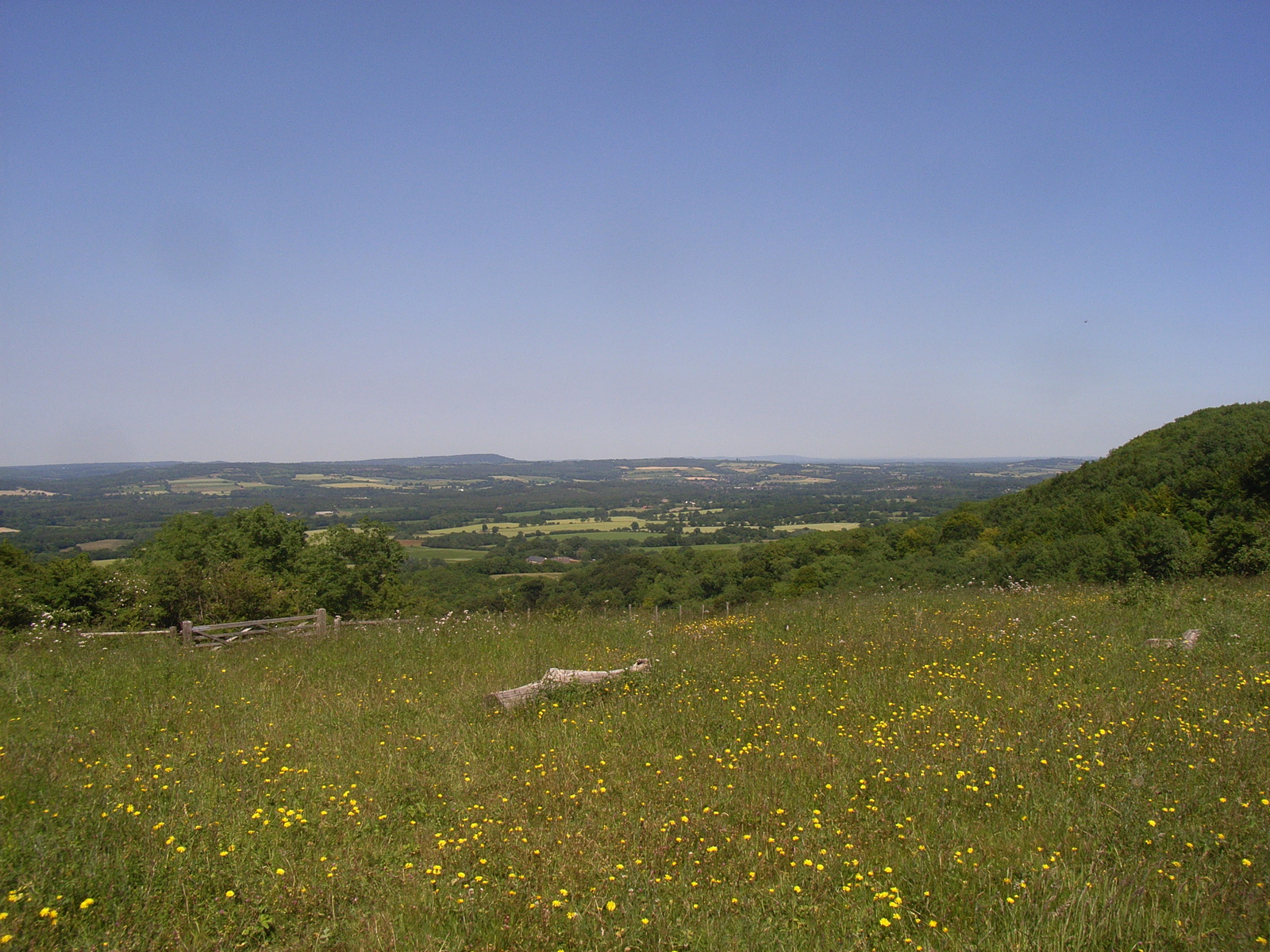 looking towards midhurst